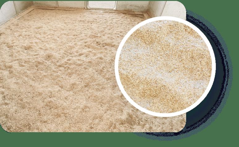 Hemp Horse Bedding Comparison